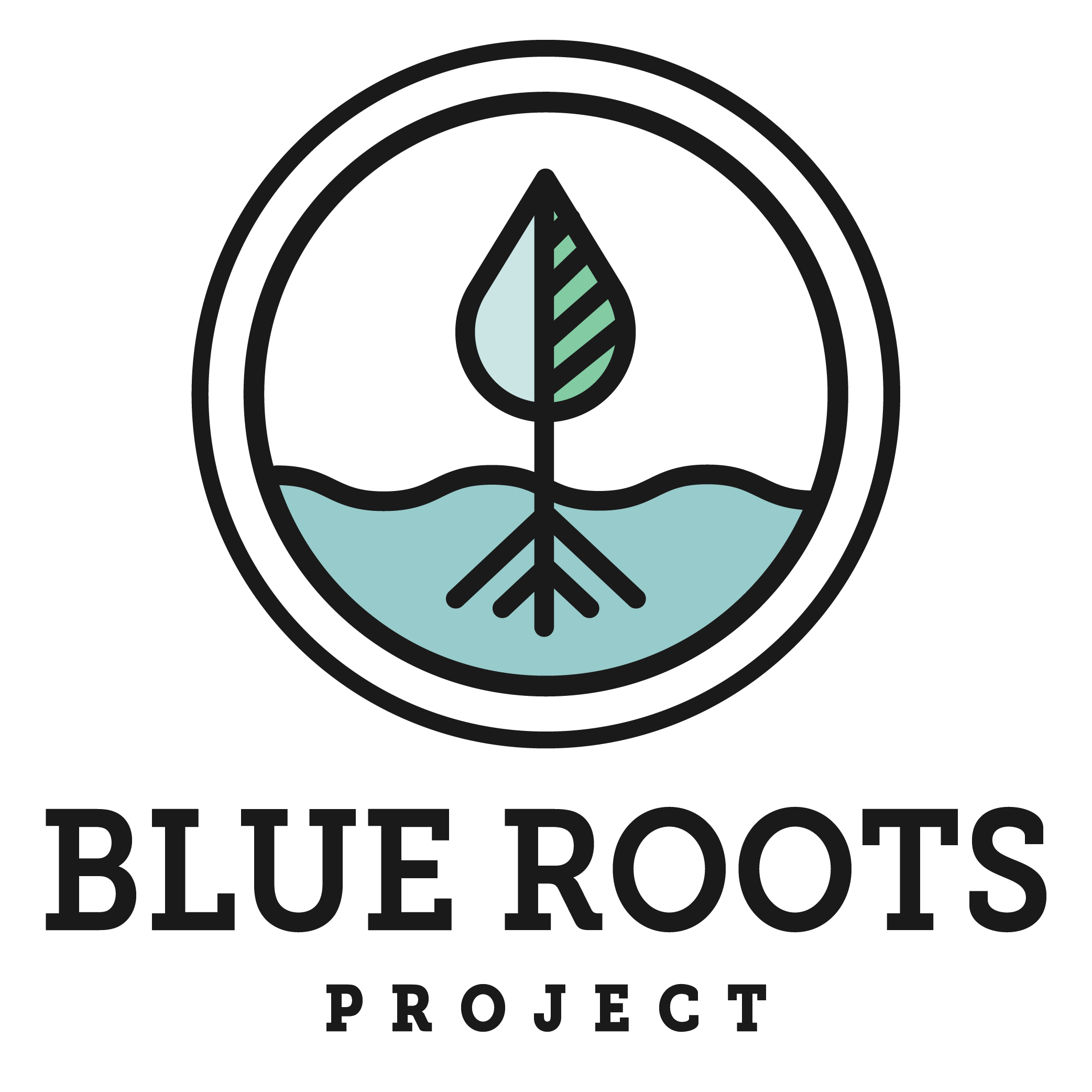 Blue Roots Project